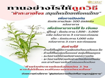 Thai herbs for Thai people